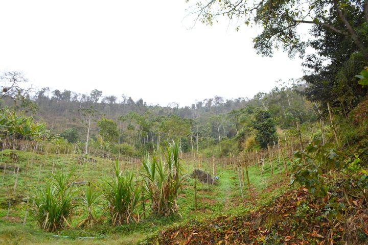 Imagem São José do Vale do Rio Preto